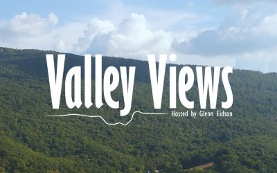 Valley Views with Artist Karis Feezell