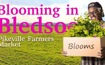 Lemon weed, Hornets, Mosquitos – Master Gardeners at Blooming Bledsoe